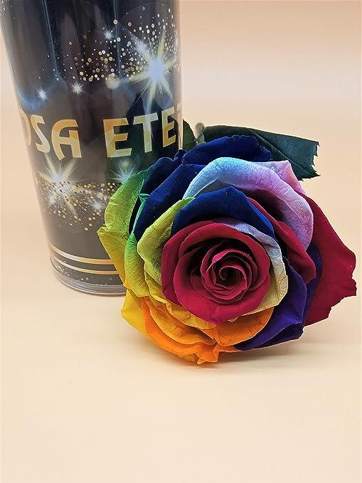 Almaflor Rosa eterna Arcoíris Multicolor Extra. Gratis TU ENVÍO Prime. Rosa preservada arcoíris Cabeza Extra. Rosa preservada arcoíris. Hecho en España.: Amazon.es: Hogar