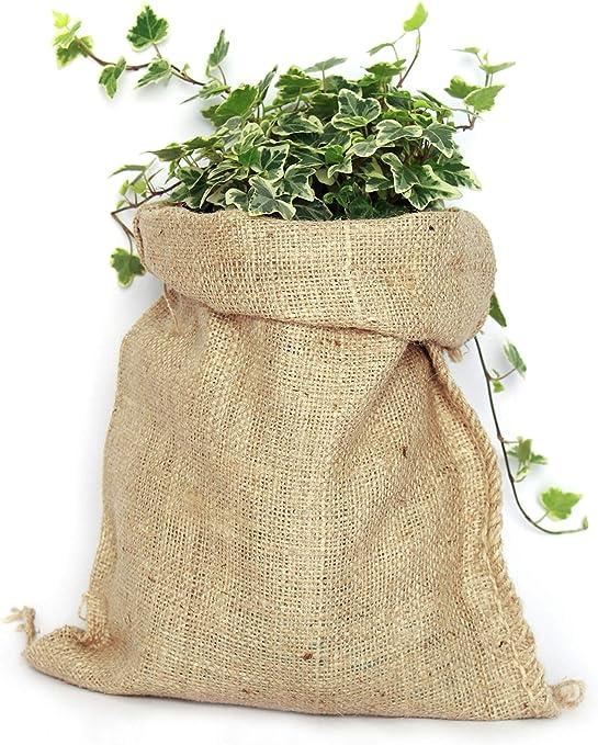 TBG Pack 5 Sacos de Yute 100% Natural. Bolsas Ecológicas Ideales ...