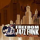 "D.L Presents FREEDOM JAZZ FUNK ""Mellow Storm"""