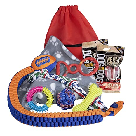 Amazon.com: Cesta de regalo para perro, cesta de regalo para ...