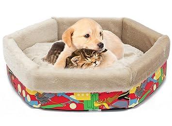 Camas especiales para perros
