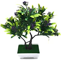 Bonsai Artificial Dwarf Tree ~ Artificial Plants with Pot and Grass Ideal for Home Décor. with Realistic Detailing Size - 25cm x 24cm (Pot - 11cm x Breath 7cm)