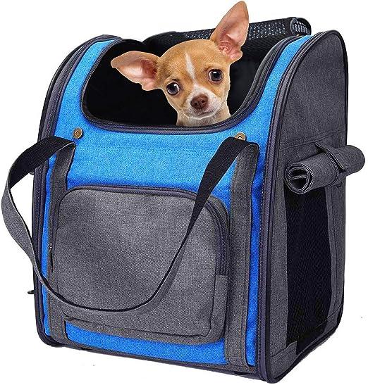Mochila Plegable Transportin para Perro Gato Cachurro Gatito Mascota Pequeña, Transportín Portador Bolsa de Transporte Respirable Impermeable Peso de hasta 8 kg para Viaje Avión (Gris + Azul): Amazon.es: Productos para mascotas