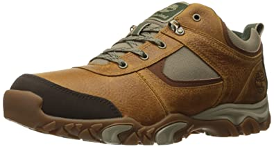 Timberland Men's Mt. Abram Low Winter Boot, Dachshund,