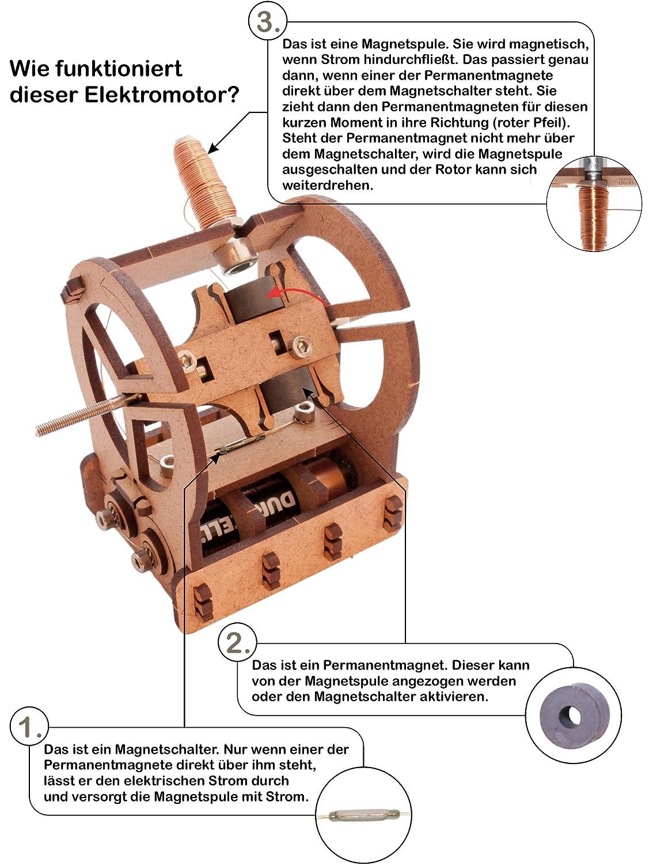 YouMake Elektromotor Bausatz / Lehrmittel / Lernspielzeug - Made in ...