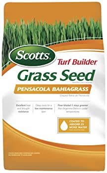 Scotts 18103 Pensacola Bahia Turf Builder Grass Seed