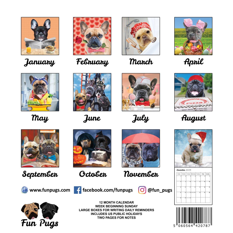 Fun Frenchies 2019 French Bulldog Wall Calendar by Fun Pugs (Image #3)