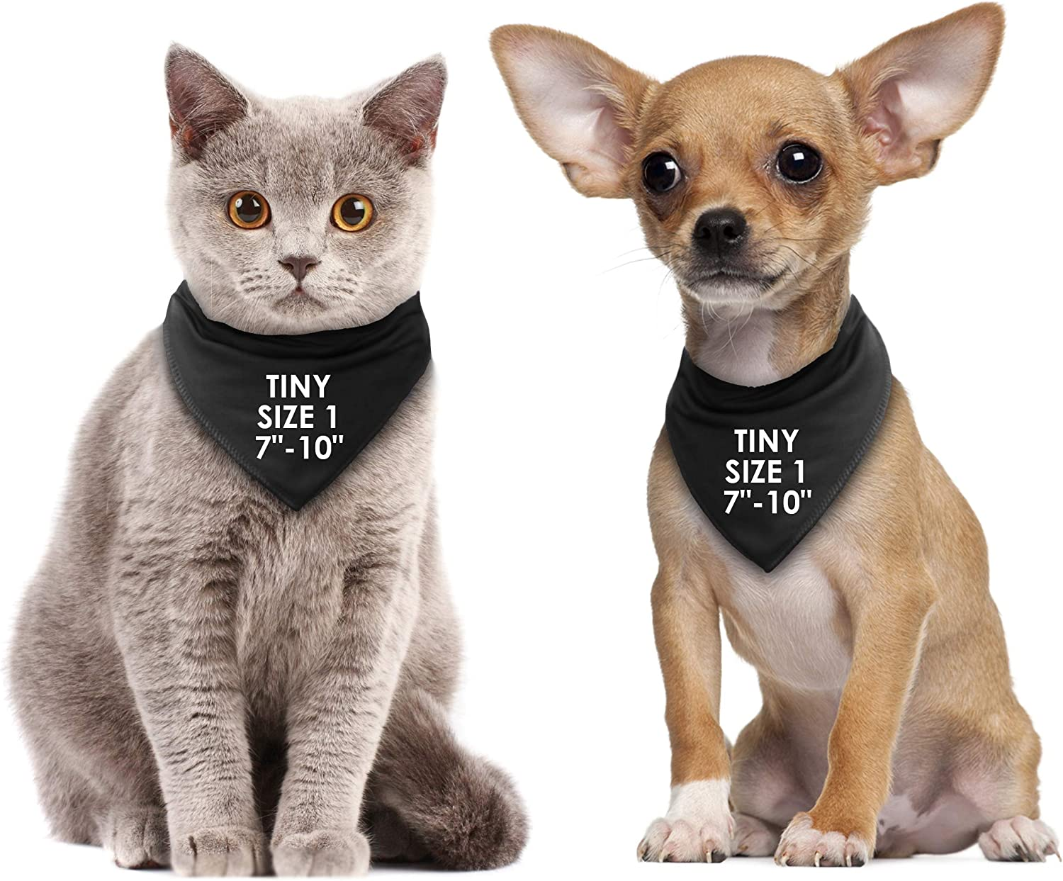 Wedding Announcement Big Reveal For Dogs S2 Small Dogs Shih-tzu Terriers /& Cockerpoo My Humans Are Getting Married Black Dog Bandana