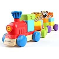 Baby Einstein Discovery Train Tren del Descubrimiento, color Multi, paquete de 1