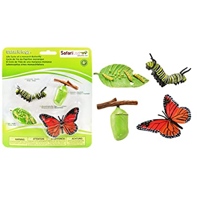 Safari Ltd Life Cycle of a Monarch Butterfly: Toys & Games