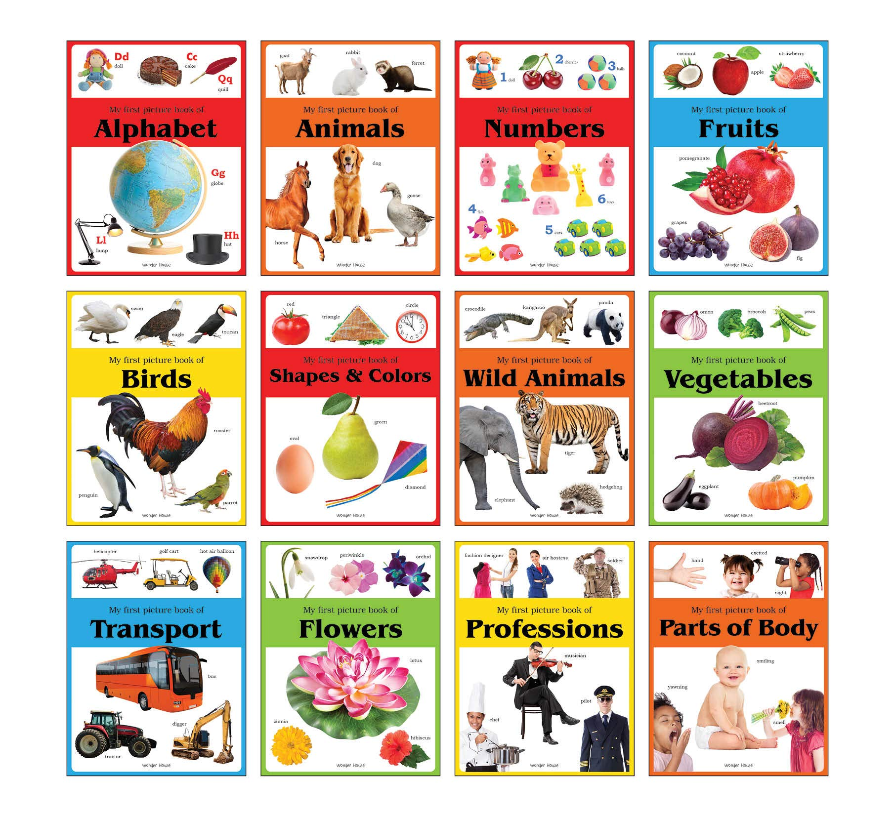 Early Learning Picture Books: Pack of 12 Picture Books For Kids