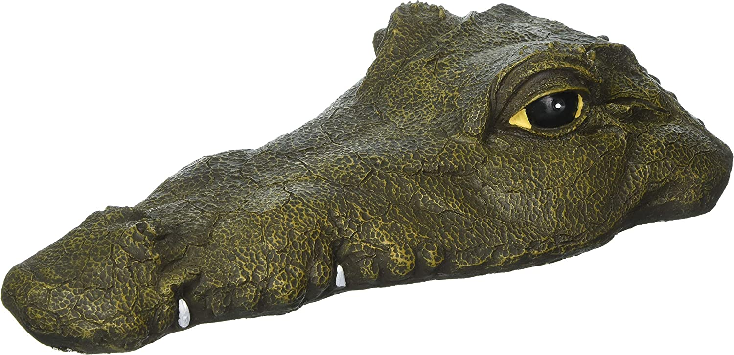 "Dalen Floating Alligator Head Water Decoy; Non-Toxic, Lightweight UV Resistant Paint, Natural Enemy Scarecrow for Pools & Garden Ponds; Realistic Statue, All-Weather Finish (Closed Mouth 13.5"" Long)"