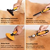 Friends Forever 6 in 1 Professional Pet Grooming
