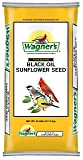 Wagner's 76029 Oil Sunflower Seed, 40-Pound Bag