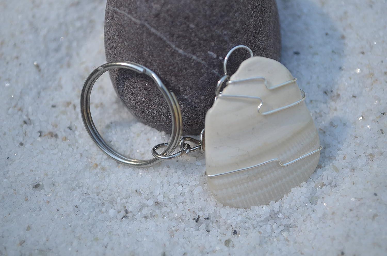 Amazon.com: Redondeadas concha de mar llavero: Office Products