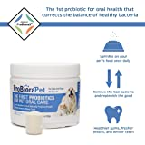 ProbioraPet Oral Probiotic for Pets, 30-Day Supply