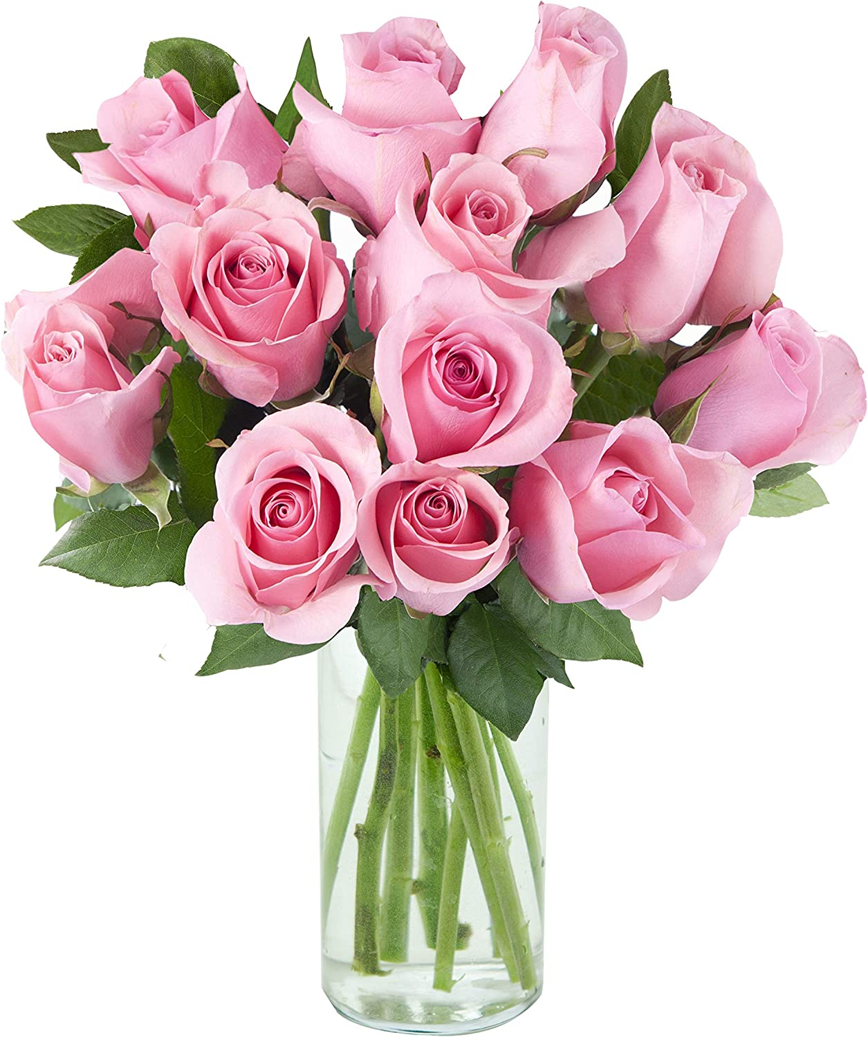 Purchase Now for Delivery by Tuesday | Arabella Farm Direct Bouquet of 12 Fresh Cut Pink Roses with a Free Glass Vase