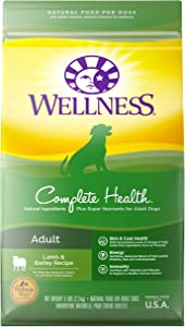 Wellness Complete Health Adult Dry Dog Food, Lamb & Barley Recipe, 5 Pound Bag