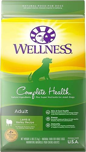 Wellness-Natural-Pet-Food-Complete-Health-Natural-Dry-Dog-Food