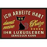 Fußmatte Türmatte Schmutzfangmatte für den Katzenliebhaber: Ich arbeite hart für das Luxusleben meiner Katze 225