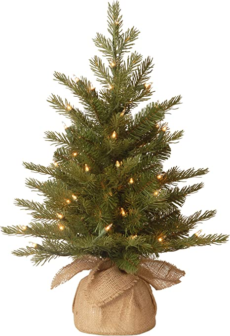 Amazon Com National Tree Company Feel Real Pre Lit Artificial Mini Christmas Tree Includes Small Lights And Cloth Bag Base Nordic Spruce 2 Ft Home Kitchen
