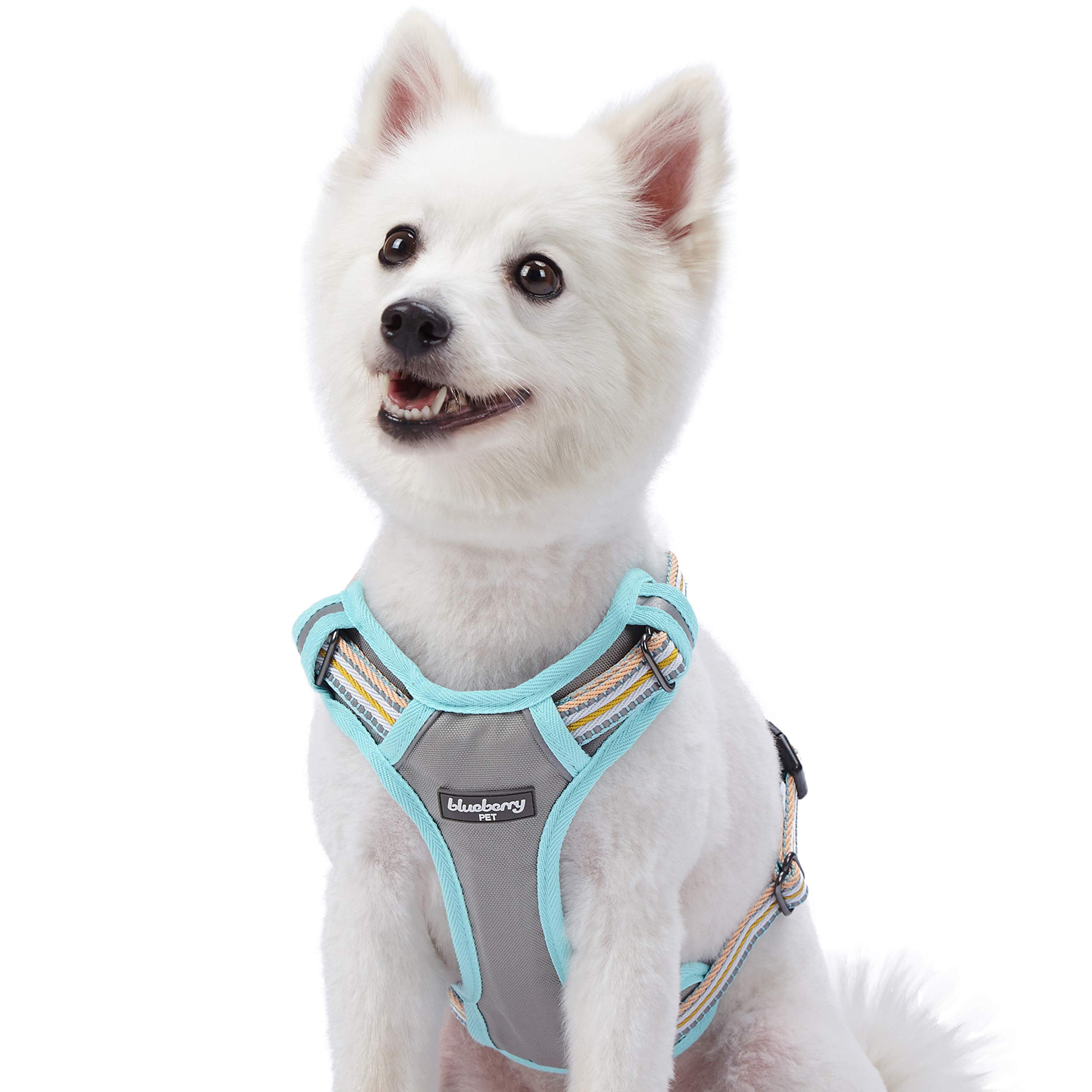 Blueberry Pet 9 Colors Soft & Comfy 3M Reflective Multi-Colored Stripe Padded Dog Harness Vest, Chest Girth 22''-26.5'', Neck 17.5''-26'', Pastel Blue & Beige, Medium, Mesh Harnesses for Dogs