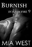 Burnish (Into the Fire Book 9)