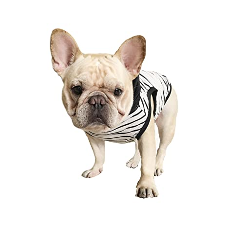 Amazon.com : Black White Stripe with Black Hoodie Pet Clothing for French Bulldog or Pug Wear Use Comfortable Fabric : Pet Supplies
