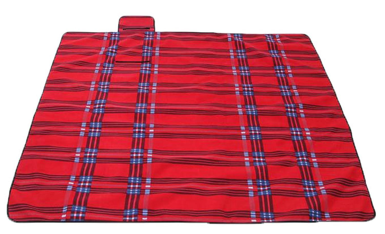 Outdoor Reise Reise Reise Wasserdicht Wildleder Für Familie Yoga Decke Zelte Picknick-Matten Faltbar 200 X 200 Cm,D B07254G1J5 | Erschwinglich  bb88e6