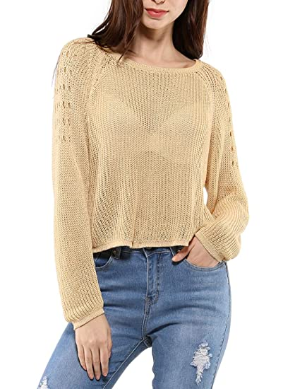 30060af8250 Allegra K Women's Hollow Cover Up Sheer Loose Knit Sweater Chroect ...