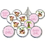 Girl Monkey Baby Shower Favor Stickers (Set Of 324)