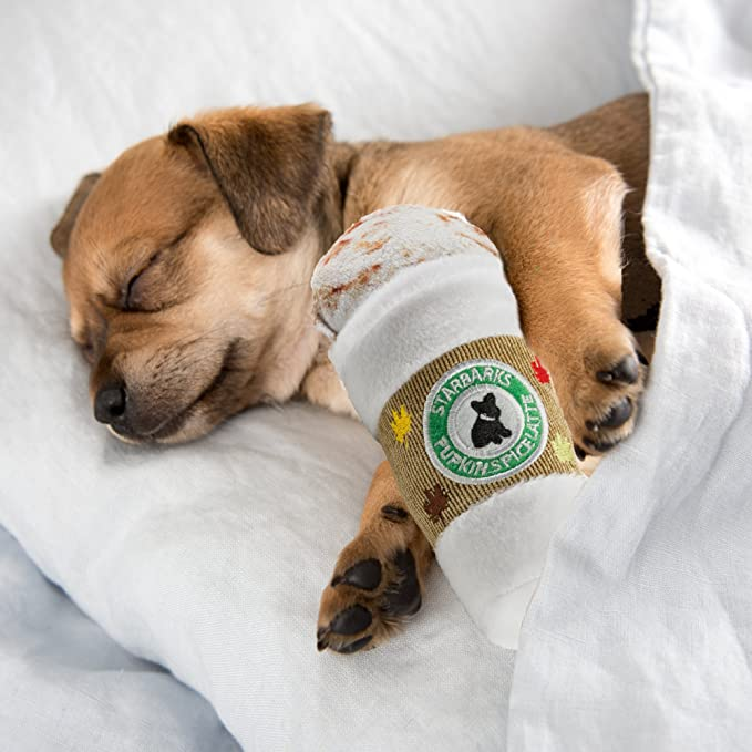 46173c5a Pet Supplies : Haute Diggity Dog Squeaky Toys - Starbarks Collection  (Starbarks Pupkin Spice Latte, Regular) : Amazon.com