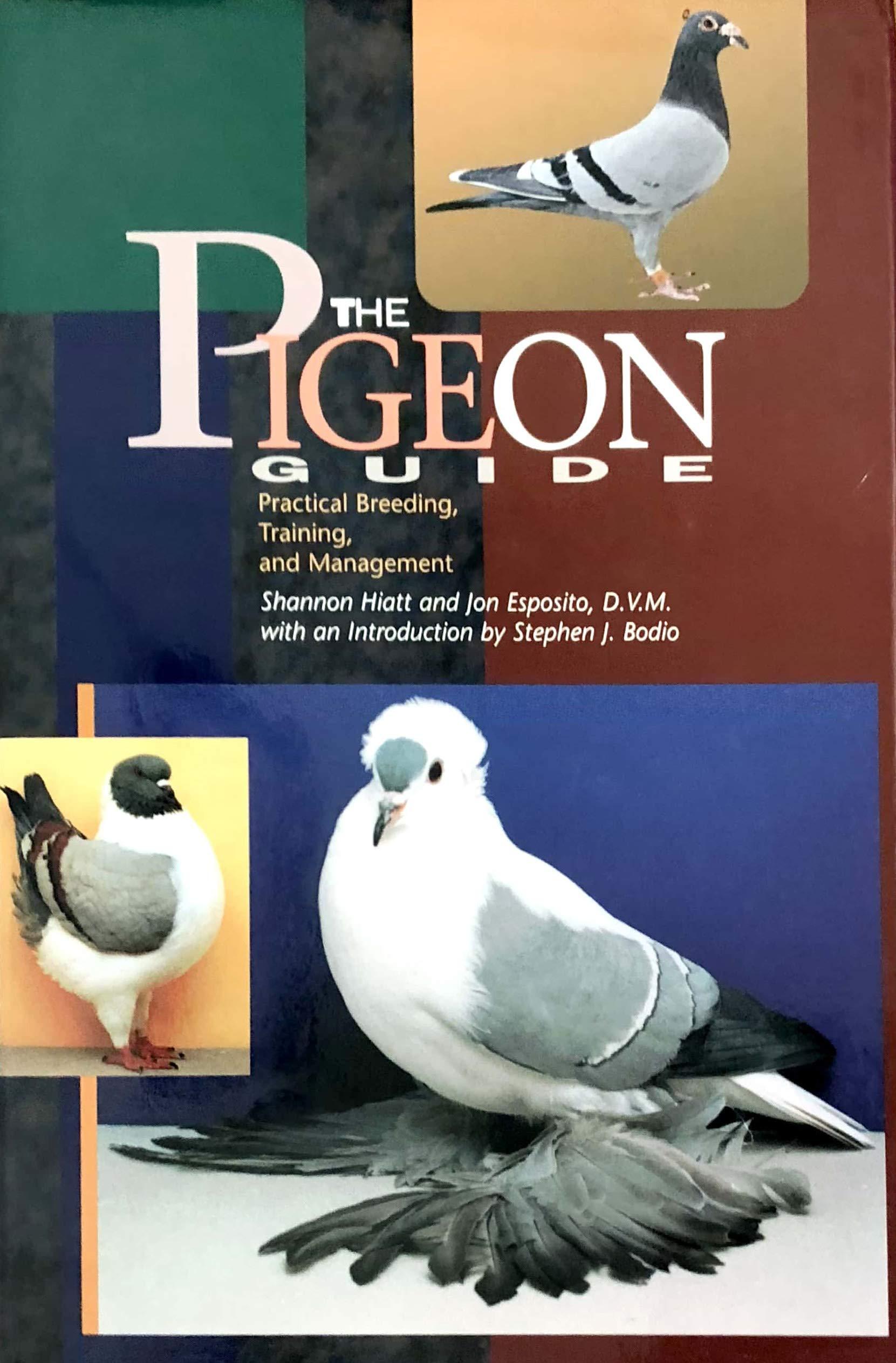 The Pigeon Guide: Practical Breeding Training and Management: Hiatt, Shannon, D.V.M., Dr. Jon Esposito, Nuez, George De La: 9781895270181: Amazon.com: Books