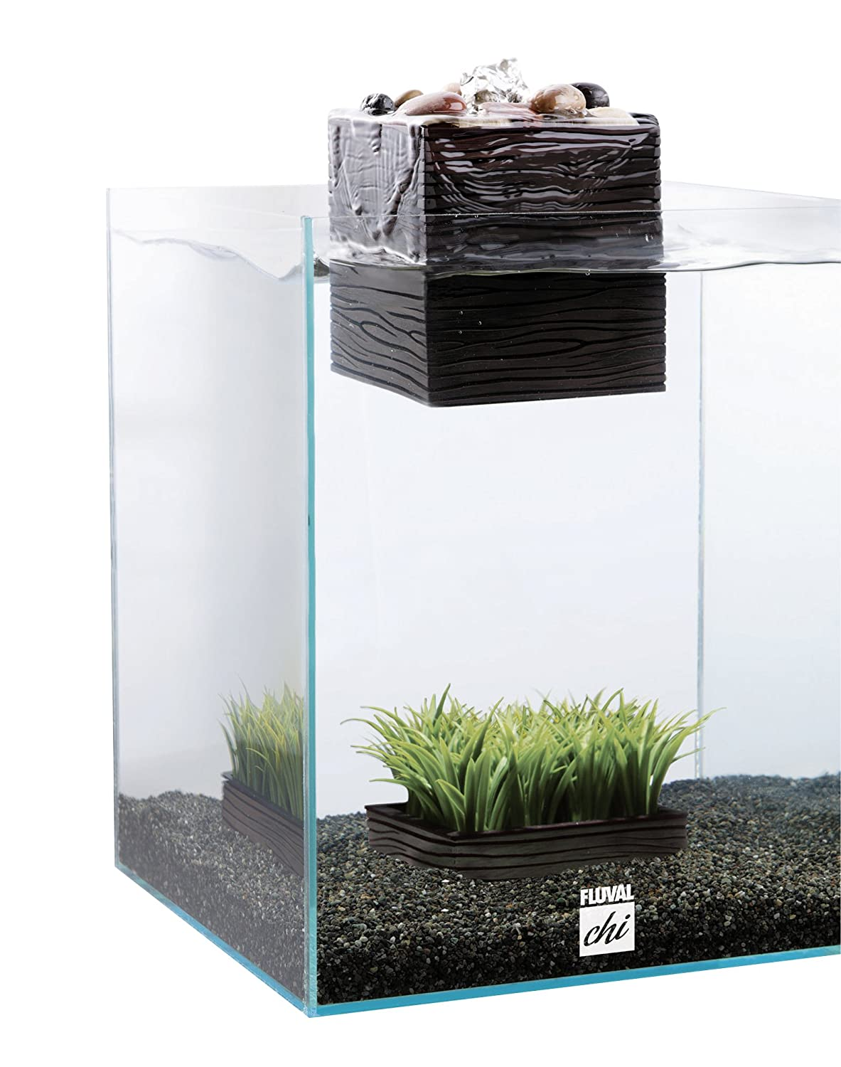 Best 5 gallon betta tank try samurai fighting fish betta for Fluval fish tank