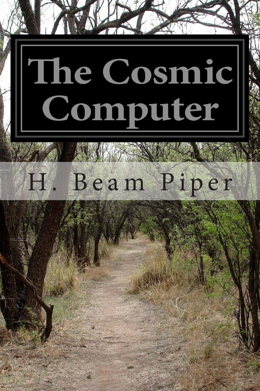 Read Online The Cosmic Computer pdf epub