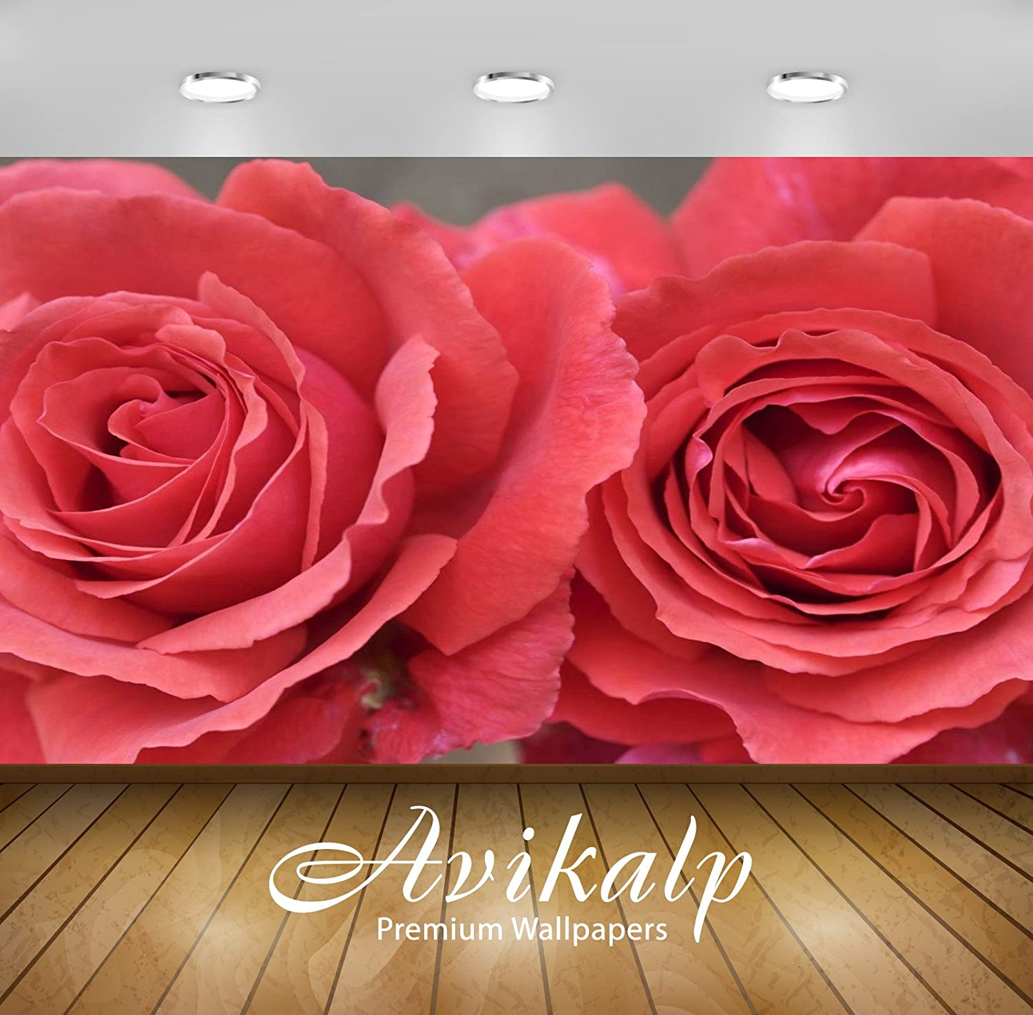Buy Avikalp Awi3296 Beautiful Red Rose Flowers Full HD 3D Scenery Wallpaper  Or Wall Sticker (Vinyl, 3 X 2 Ft) Online at Low Prices in India - Amazon.in
