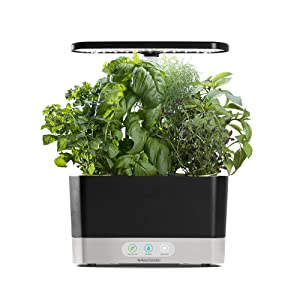 AeroGarden Harvest-Black Indoor Hydroponic Garden LED Grow Light
