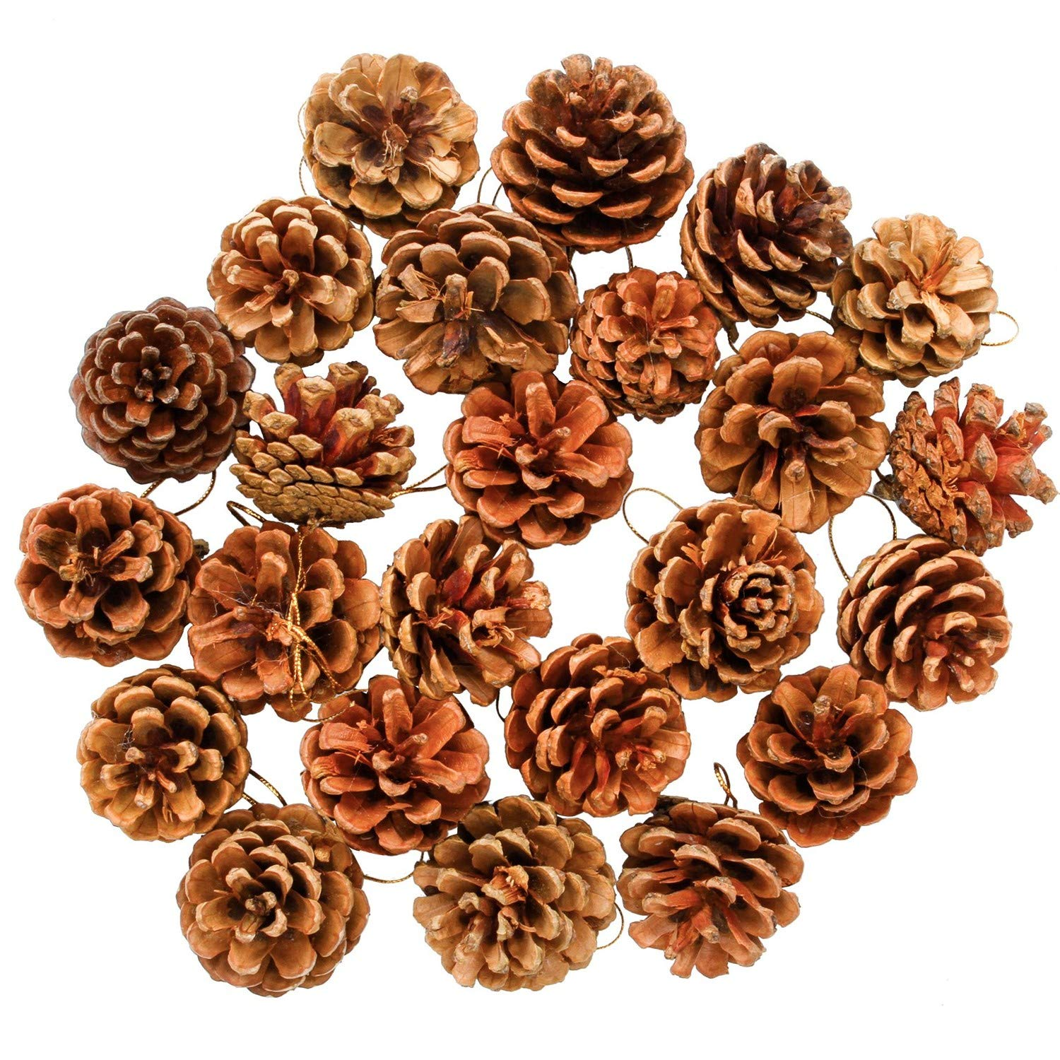 Aneco 24 Pieces Christmas Pine Cones Natural PineCones Ornament with String Pendant Crafts for Gift Tag Tree Party Hanging Decoration