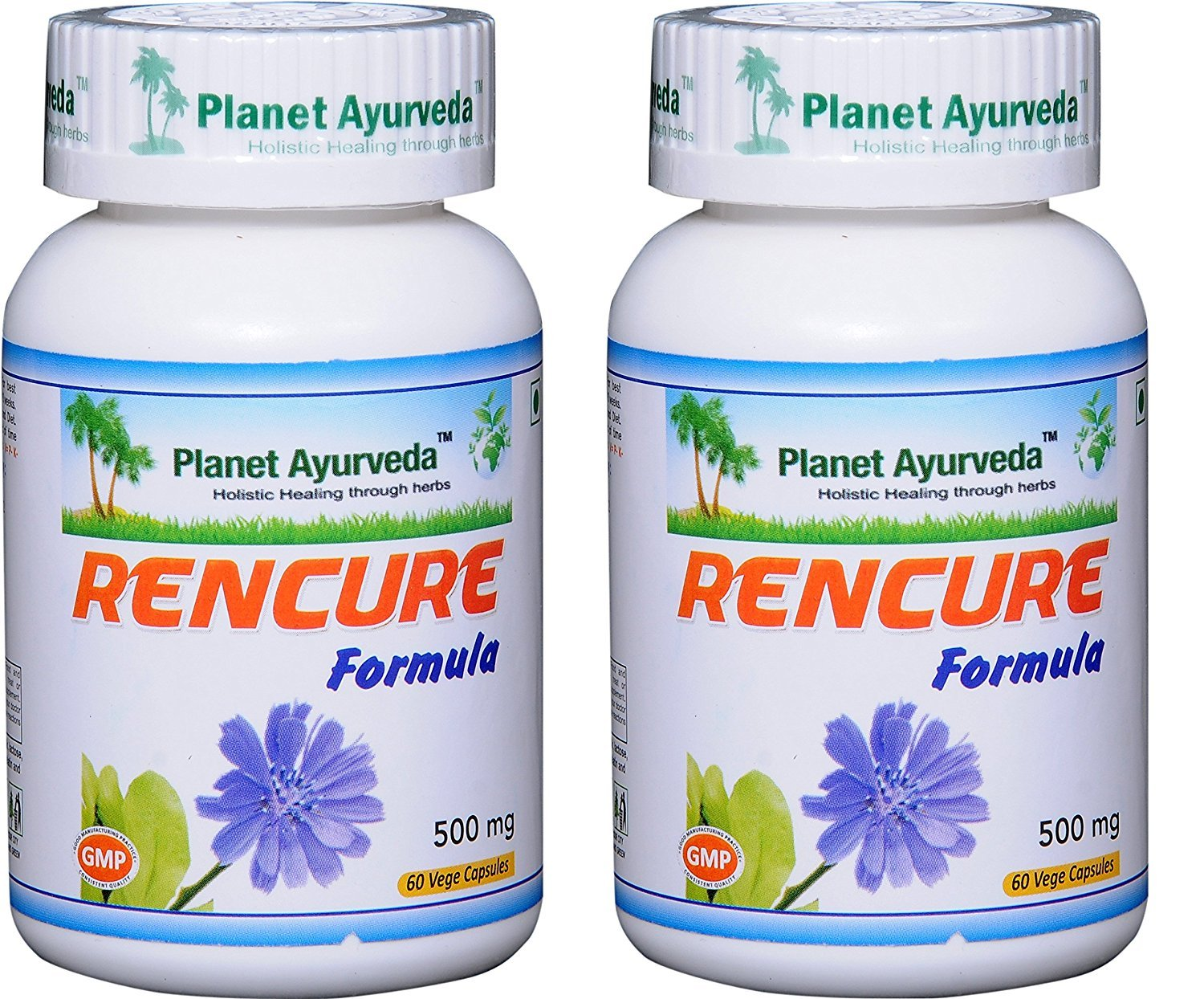 Rencure Formula - Natural Kidney Supplement - 2 Bottles (Each 60 Capsules, 500mg) - Planet Ayurveda