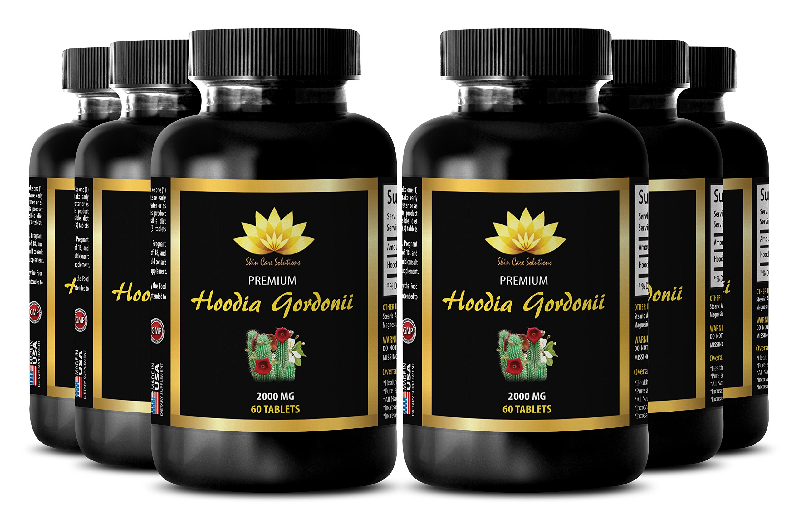 Burn fat lose weight - HOODIA GORDONII EXTRACT 2000mg - Energy weight loss pills - 6 Bottles 360 Tablets