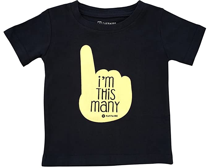 Fayfaire First Birthday Shirt Outfit Boutique Quality 1st Bday Im This Many 12 18M