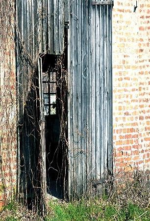4X6FT-Thin Vinyl Green Brick Photography Backdrops Wood Studio Photo Background