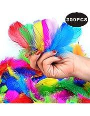 SUNRIZ Plumes Colorées, 300pcs Naturel Multicolore Plume Décoration pour DIY Arts Crafts, Idéal pour Costumes, Chapeaux, Décoration d'intérieur Fete Mariage Anniversaire