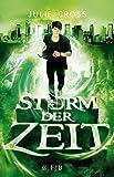 Sturm der Zeit: Roman