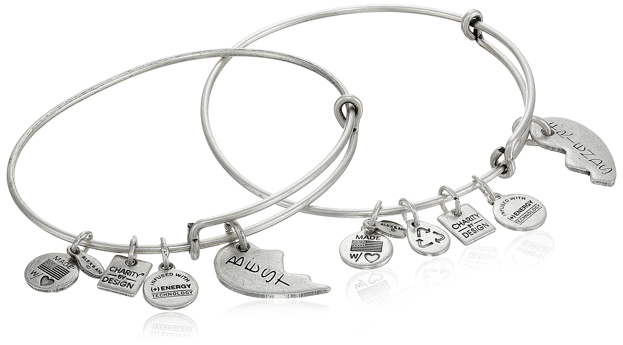 Alex and Ani Charity by Design Best Friends Rafaelian Silver-Tone Bangle Bracelet, Set of 2