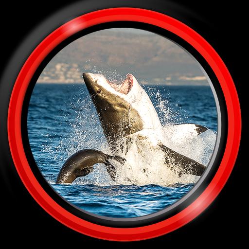 Shark Live Wallpapers