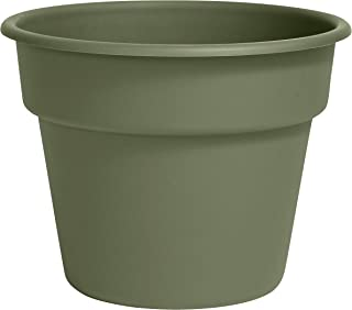 "product image for Bloem DC6-42 Dura Cotta Planter, 6"", Green"