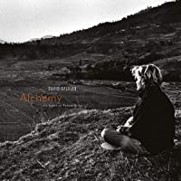 Alchemy: An Index Of Possibilities (Vinyl)