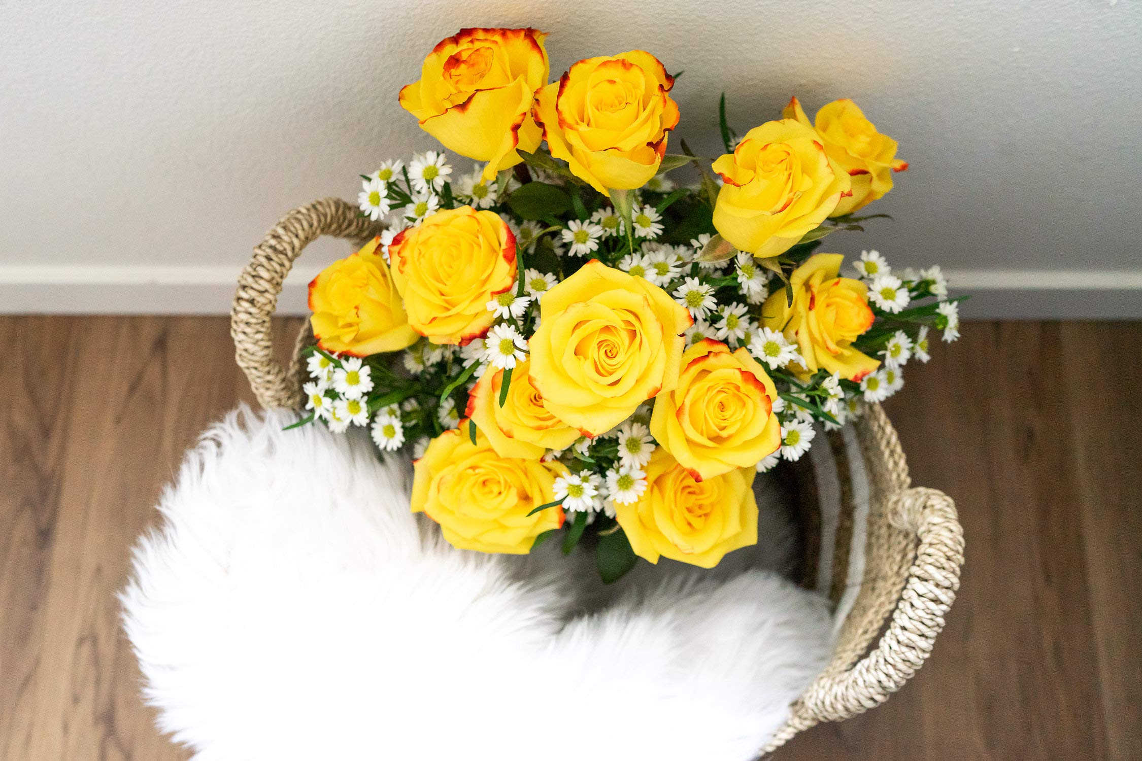 Flowers - One Dozen Festive Roses (Free Vase Included) by From You Flowers (Image #5)