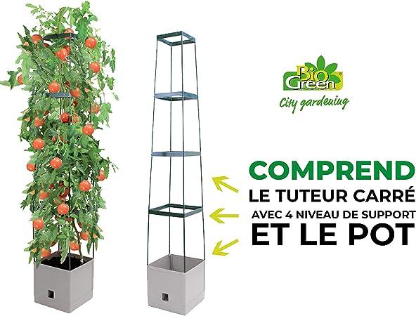 Bio Green MT 1Q Tour pour Plantes Grimpantes Maxitom Terracotta 25,5 x 25,5 x 150 cm